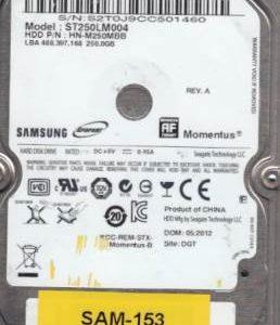 Samsung ST250LM004 250GB