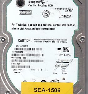 Seagate ST980811AS 80GB