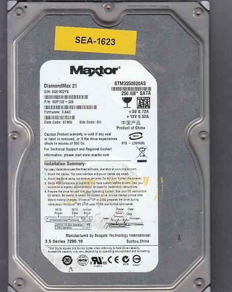 Seagate 6A250E0 250GB