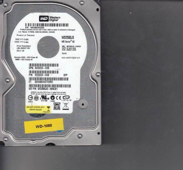 Western Digital WD2500JS-60NCB1 250GB