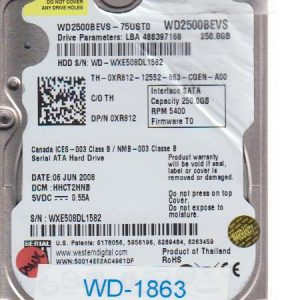 Western Digital WXE508DL1582 250GB