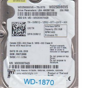 Western Digital WD-WXC608676429 250GB