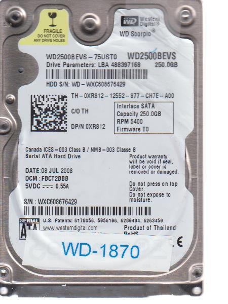 Western Digital WD-WXC608676429 250GB