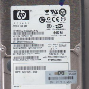 HP EG3000FAWHV 300GB