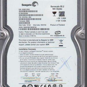 Seagate ST3500320NS 500GB
