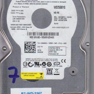 Western Digital WD2500YS-18SHB2 250 GB